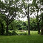 The peaceful grounds surrounding the house