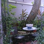 A quiet place for coffee or conversation under the mango tree.