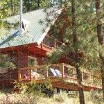 Cabin Profile