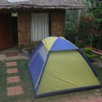 Tent outside cottage