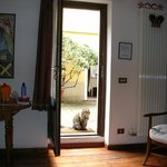 Looking from the room to the courtyard and one of the cats.