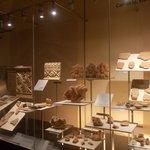 accademia etrusca - vetrina reperti 2