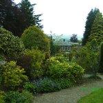 Eggleston's Gardens