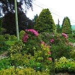 Eggleston gardens