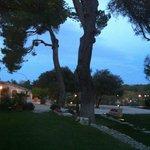Evening - looking toward Potager