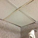 Shower ceiling.