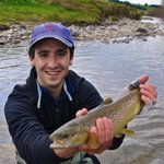 Brown Trout on the Mataura River