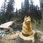 carved bear waiting for hikers on the 'new' trail