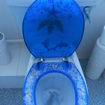 """Interesting"" toilet lid and seat."