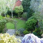 Lovely garden view from the room window
