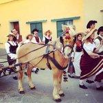 Pony and cart - Maggiolatta Lucignese