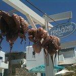 Fisilanis, Logaras Beach