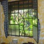 Vsta al Jardín interno vista desde mi habitación
