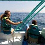 A punto de nadar con el tiburón ballena