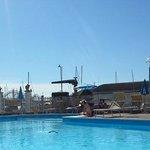 Una rondine in piscina