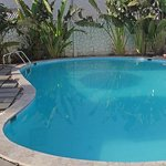 Sunflower swimming pool
