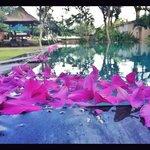 Pool Villa Club at Sanur Beach Hotel