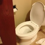 door stuck on toilet seat