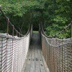 Walking across the swing bridge.