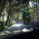viale entrata del hotel Albona