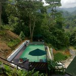 The Inviting Pool
