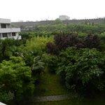 vue de la terrasse de la chbr
