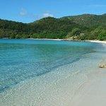 Little Lameshur Bay beach, St John