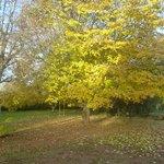 L'automne au Petit Havre