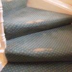 Threadbare carpets