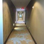 Corredor del Hotel, entre las habitaciones... Moderno y sofisticado diseño..