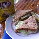 Typical Sandwich