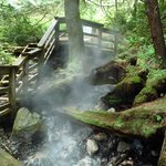 Foto de Hot Springs Cove