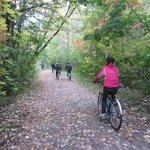 Rolling off the beaten path...exploring one of the city's many ravine trails