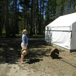 Wife in front of one of the tent cabins
