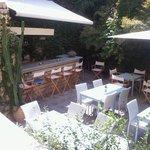 όνειρο αυλή2   Oneiro garden2