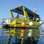 Scandola et plongée sous marine