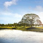 JW Marriott Panama Golf Course