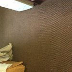 Dirty carpet TravelLodge Terre Haute IN