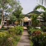 Pretty garden and main restaurant entrance