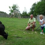 schaapjes voeren met de gastheer (Hakuna Matata) Alain nabij het speelpleintje