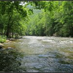 Raven Fork River that flows thru the campground