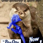 Come watch all your favorite sports!