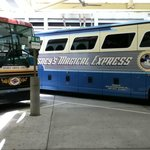 Disney's Magical Express from the Airport