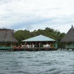 Mangrove gebied Panama