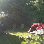 Camp Site at Corofin Hostel