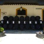 Sandeman Bodega
