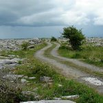 On the road to The Burren