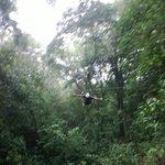 Looking upward on the Tarzan swing