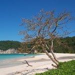 Tarimbang Bay
