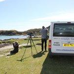 Watching the waders at Ardalanish Bay